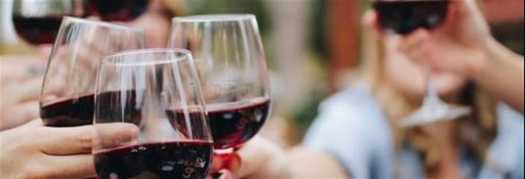 70e4d92b-8b9e-4188-8d20-eb9fc9e51a02_272692ba-2349-492a-83e2-a40ba89510c1_wine toast.jpg
