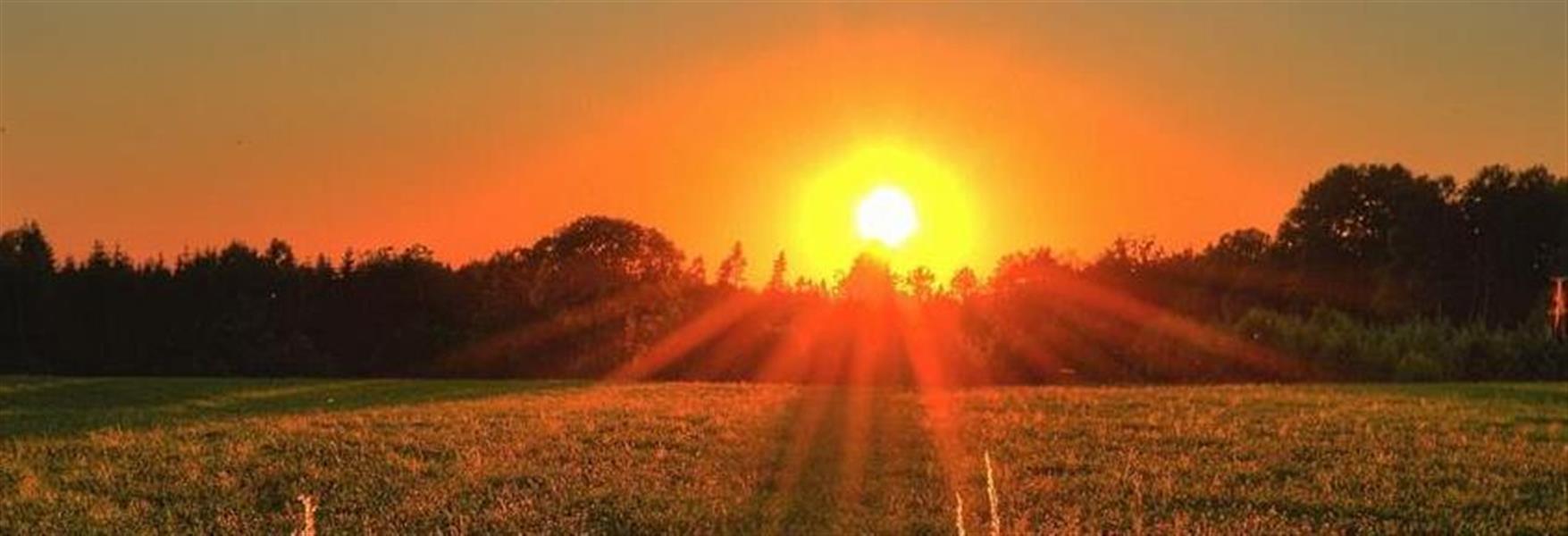 8f1ccb9c-3c72-4aac-af6f-743c42667723_sunrise.jpeg